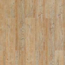 HYDROCORK Arcadian Soya Pine - panel winylowy z rdzeniem korkowym